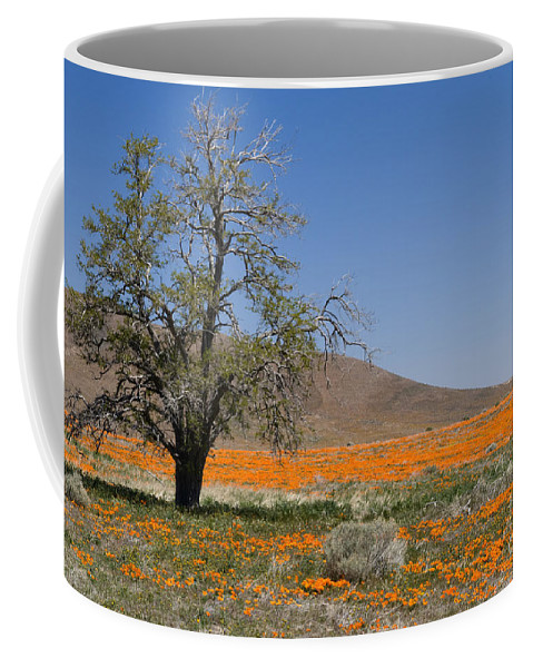 Poppies Coffee Mug featuring the photograph Lone Tree In The Poppies by Sandra Bronstein