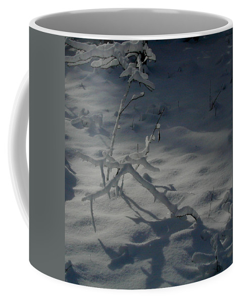 Loneliness Coffee Mug featuring the photograph Loneliness In The Cold by Douglas Barnett