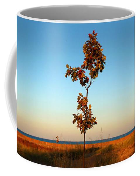 Tree Coffee Mug featuring the photograph Loneliness by Milena Ilieva