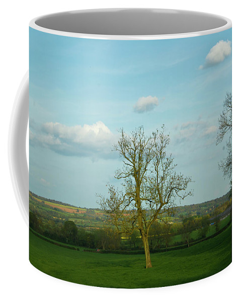 Cotswold Coffee Mug featuring the photograph Lonely Tree Cotswold England by Douglas Barnett