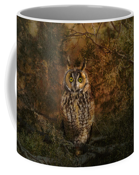 Long Earred Owl Coffee Mug featuring the photograph Long Eared Owl Surprise by Vicki Stansbury