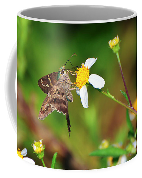Animal Coffee Mug featuring the photograph Long-tailed Skipper Butterfly by Rich Leighton