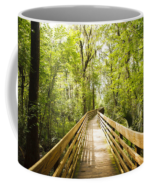 Long Coffee Mug featuring the photograph Long Walks by Marilyn Hunt