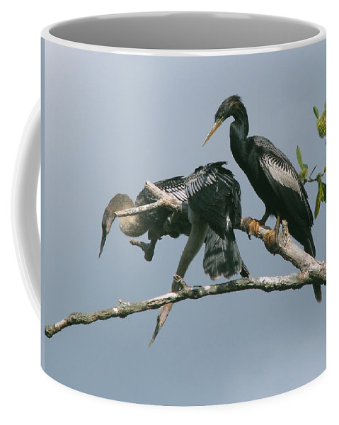 Nature Coffee Mug featuring the photograph Long Way Down by Peg Urban