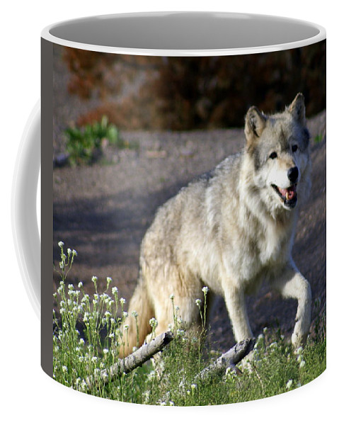 Wildlife Coffee Mug featuring the photograph Lonly Wolf by Marty Koch