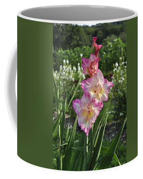 Pink And White Flower Poster Coffee Mug featuring the photograph Look At Me by Penny Neimiller