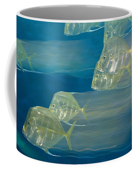 Atlantic Ocean Coffee Mug featuring the photograph Lookdown Fish Selene Sp. In Motion by George Grall