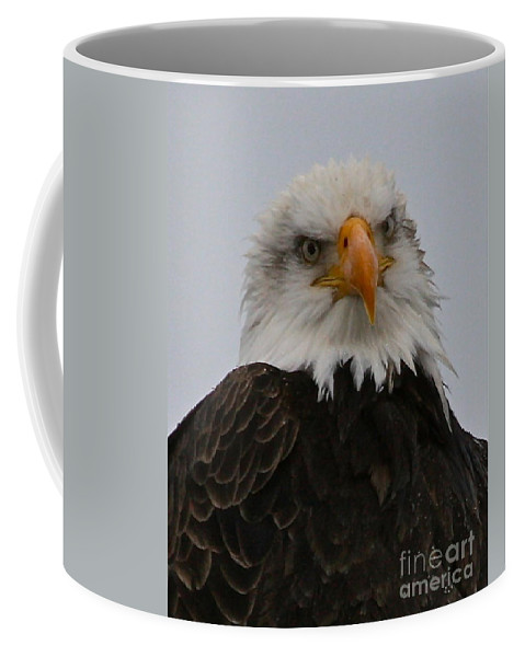 Eagle Coffee Mug featuring the photograph Looking At You by Rick Monyahan