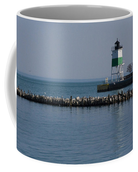 Chicago Lake Michigan Windy City Lighthouse Bird Gulls Water Blue Sky Coffee Mug featuring the photograph Looking Far by Andrei Shliakhau