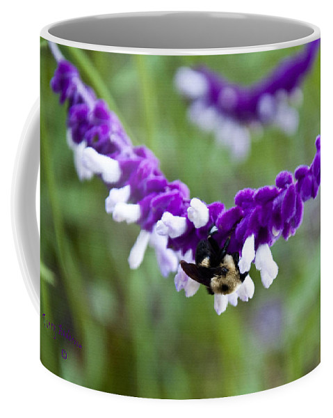 Flowers Coffee Mug featuring the photograph Looking For Lunch by Terry Anderson