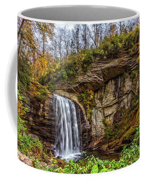 Looking Glass Falls Coffee Mug featuring the photograph Looking Glass Falls 1 by Gestalt Imagery