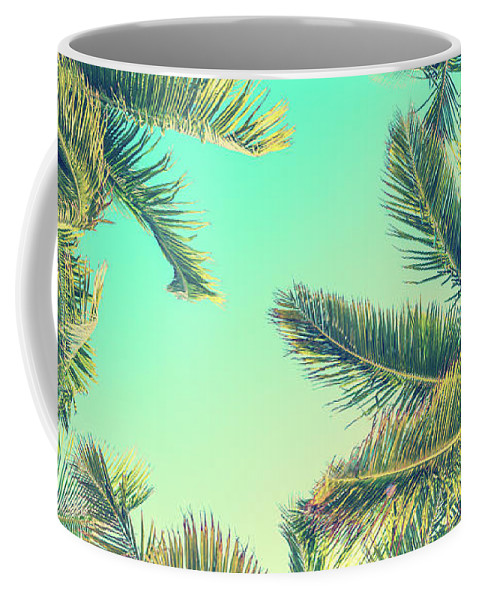 Palm Trees Coffee Mug featuring the photograph Looking Up by Delphimages Photo Creations