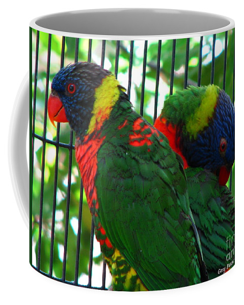 Patzer Coffee Mug featuring the photograph Lory by Greg Patzer