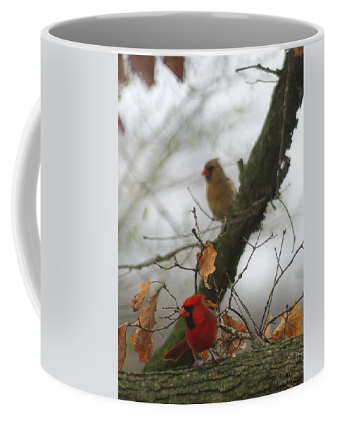 Jenny Gandert Coffee Mug featuring the photograph Love At First Sight by Jenny Gandert