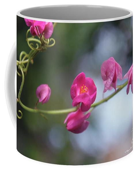 Keywords Coffee Mug featuring the photograph Love Chain3 by Megan Dirsa-DuBois