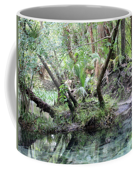 Landscape Coffee Mug featuring the photograph Lovely Lithia Springs by Carol Groenen