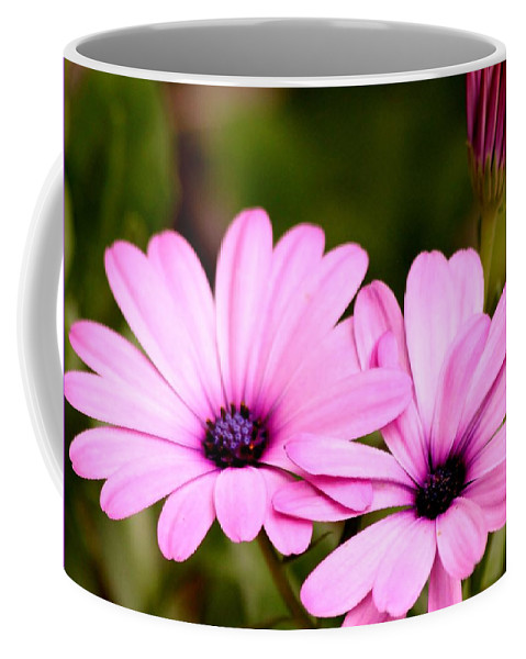 Flowers Coffee Mug featuring the photograph Lovely Pink Petals by Kimberly Gust