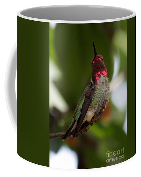 Hummingbird Coffee Mug featuring the photograph Lovely Ruby Red by Carol Groenen