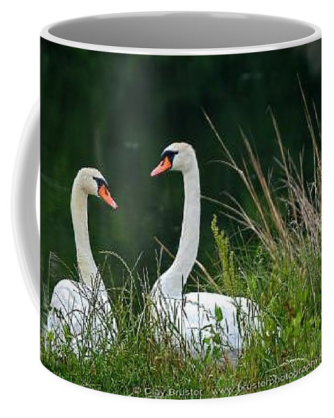 Clay Coffee Mug featuring the photograph Loving Swans by Clayton Bruster
