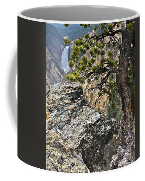 Pine Tree Coffee Mug featuring the photograph Lower Yellowstone Falls by Daryl L Hunter
