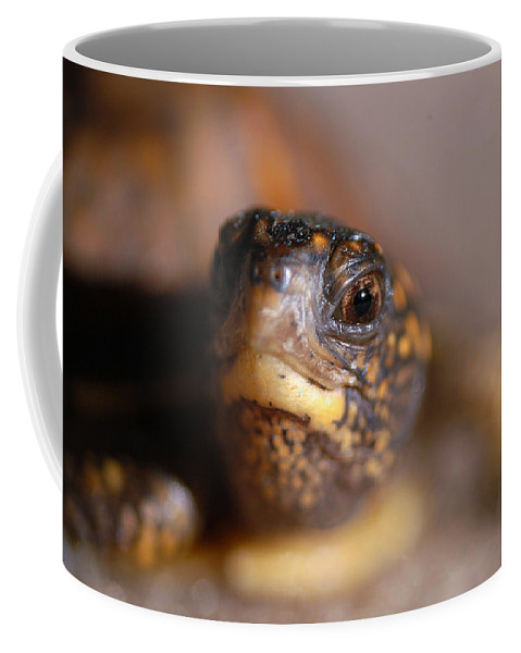 Clay Coffee Mug featuring the photograph Lucky by Clayton Bruster