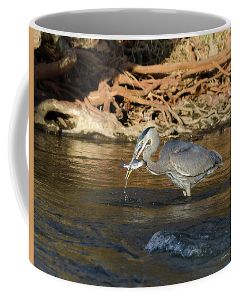 Heron Coffee Mug featuring the photograph Lunch On The Neuse River by George Randy Bass