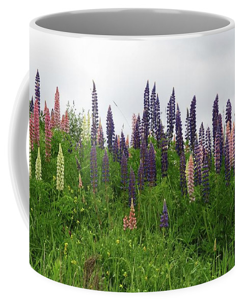 Lupin Panorama Coffee Mug featuring the photograph Lupin Panorama by Martin Howard