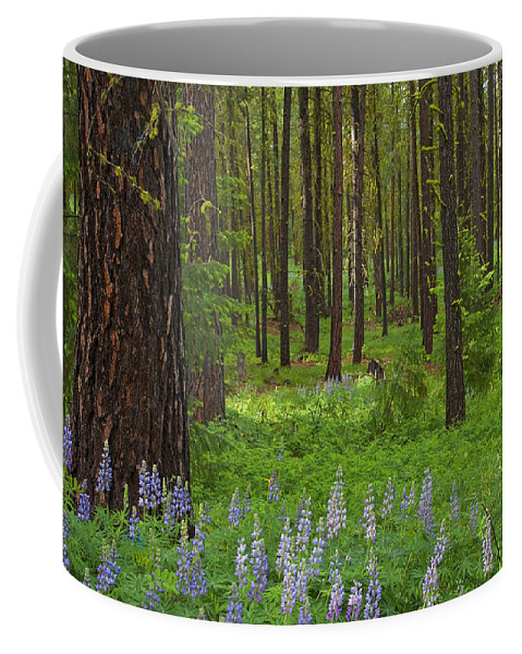 Forest Coffee Mug featuring the photograph Lupine Carpet by Mike Dawson