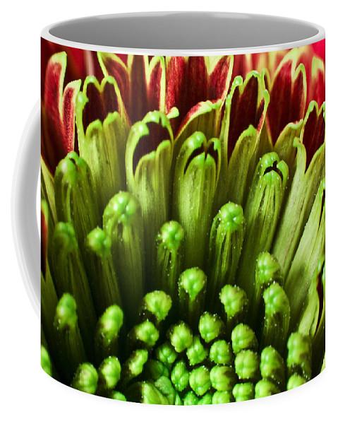 Flower Coffee Mug featuring the photograph Macro Flower by Svetlana Sewell
