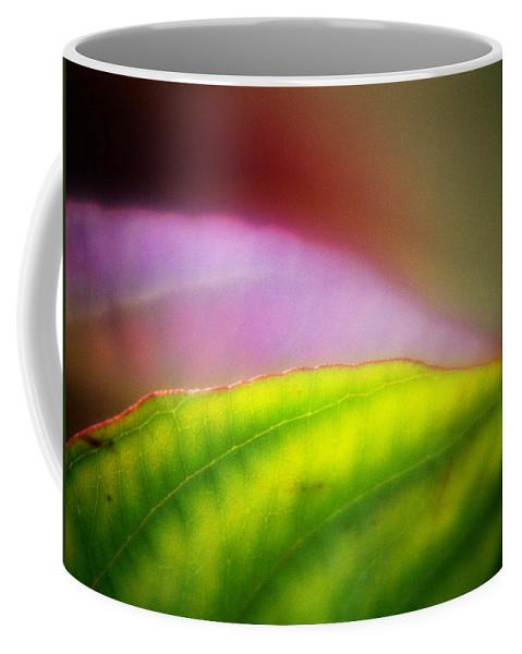 Macro Coffee Mug featuring the photograph Macro Leaf by Lee Santa