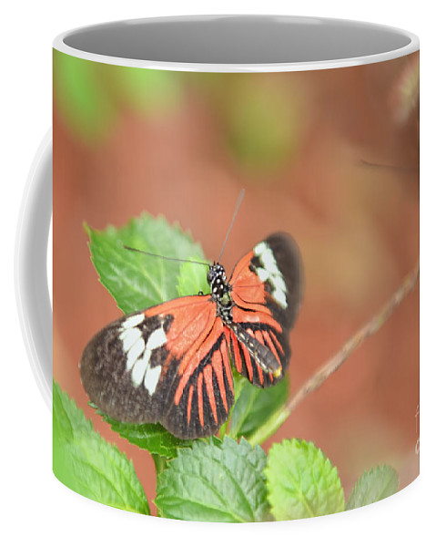 Butterfly Art Coffee Mug featuring the photograph Madiera Butterflies by Olga Hamilton