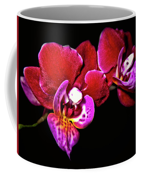 Top-artist Coffee Mug featuring the photograph Magenta Phaleonopsis Orchid by Joyce Dickens