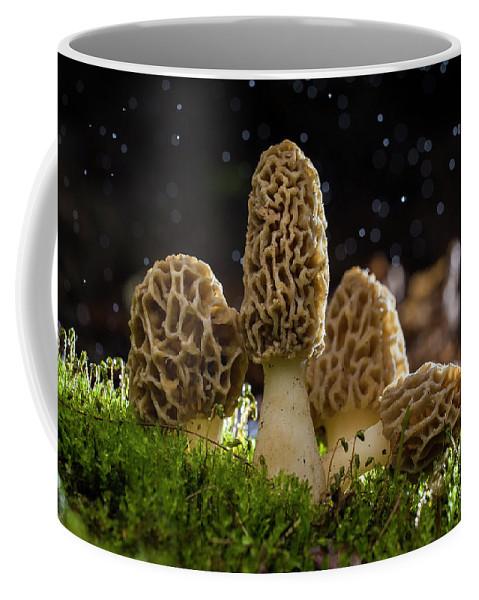 Magic Coffee Mug featuring the photograph Magic Morels by Mircea Costina Photography