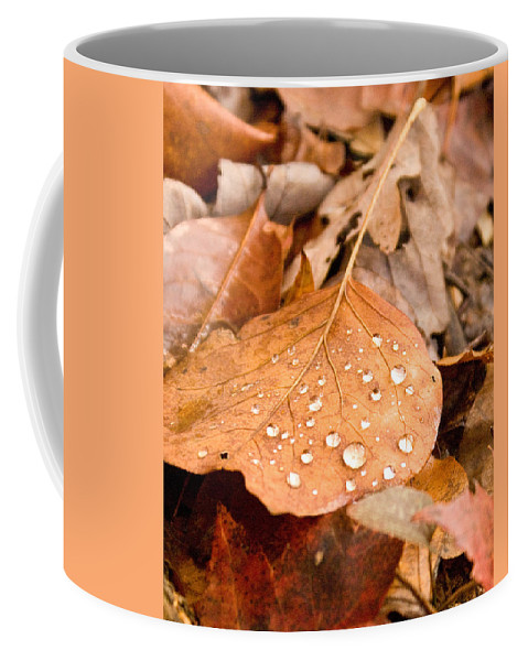 Surface Coffee Mug featuring the photograph Magic Of Surface Tension by Douglas Barnett