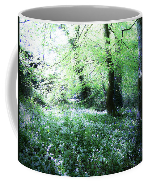 Irish Coffee Mug featuring the photograph Magical Forest At Blarney Castle Ireland by Teresa Mucha
