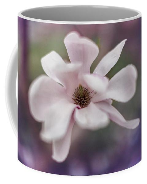 Magnolia Coffee Mug featuring the photograph Magnolia #1 by Yancho Sabev