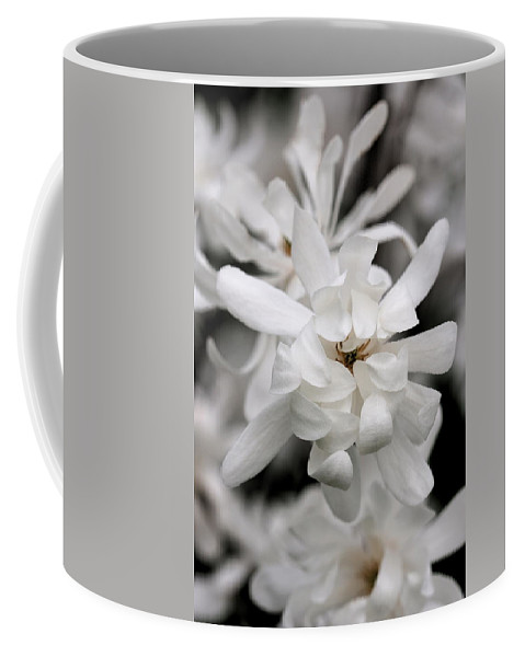 Flower Coffee Mug featuring the photograph Magnolia by Angela Rath