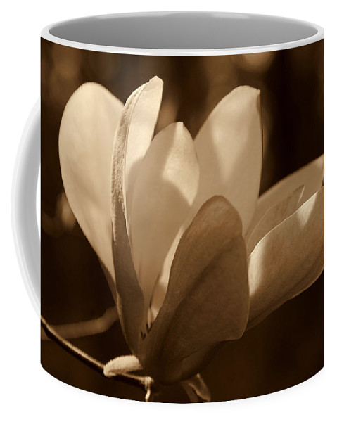 Magnolia Coffee Mug featuring the photograph Magnolia Blossom Bw by Susanne Van Hulst