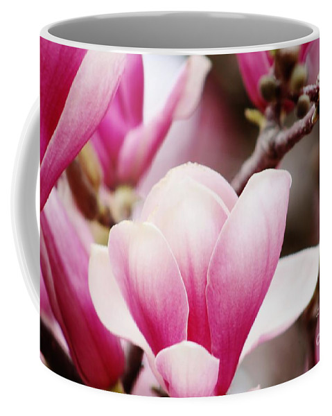 Magnolia Coffee Mug featuring the photograph Magnolia by Don Baker