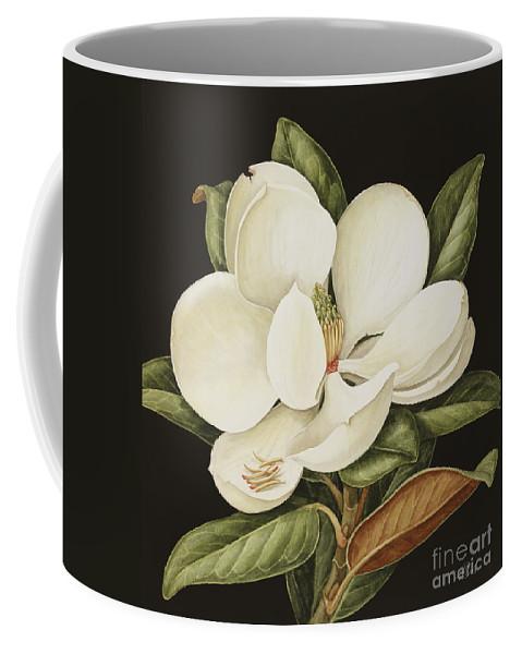 Still-life Coffee Mug featuring the painting Magnolia Grandiflora by Jenny Barron
