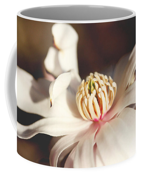 Floral Coffee Mug featuring the photograph Magnolia In Bloom by Trina Ansel