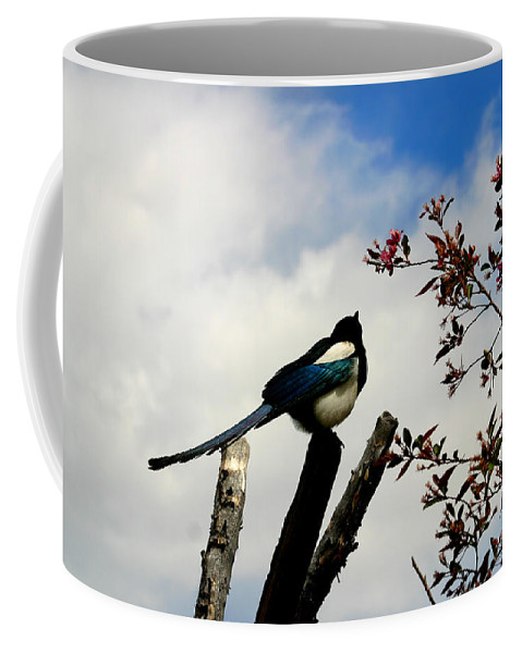 Magpie Coffee Mug featuring the photograph Magpie by Anthony Jones