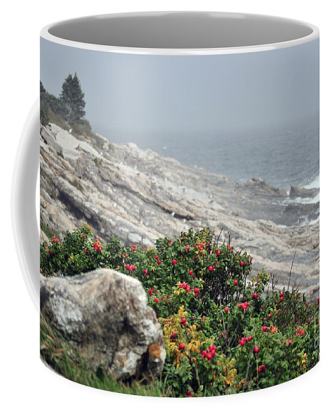 Maine Coffee Mug featuring the photograph maine 13 Pemaquid Lighthouse Shoreline Before Storm by Terri Winkler