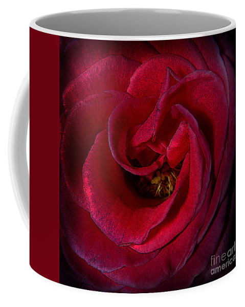 Clay Coffee Mug featuring the photograph Majestic Rose by Clayton Bruster
