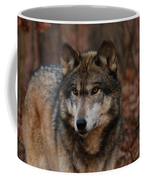 Wolf Coffee Mug featuring the photograph Majesty by Lori Tambakis