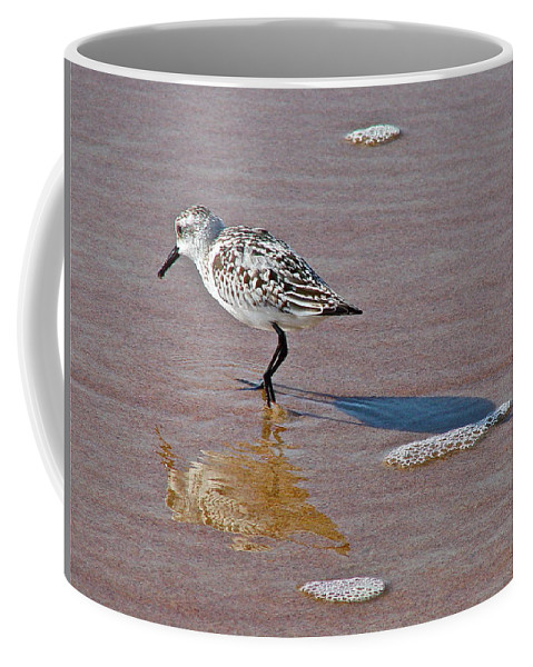 Bird Coffee Mug featuring the photograph Making Its Mark by Diana Hatcher