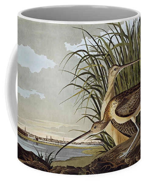 John James Audubon (jean-jacques Audubon) (1785 � 1851) Coffee Mug featuring the painting Male And Female Long Billed Curlew by MotionAge Designs