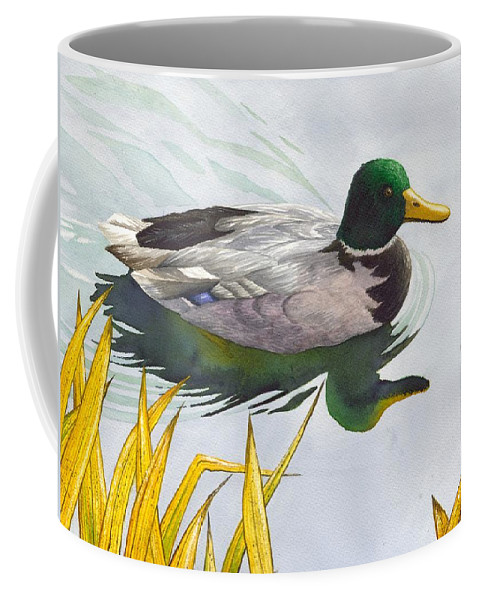 Duck Coffee Mug featuring the painting Mallard by Catherine G McElroy