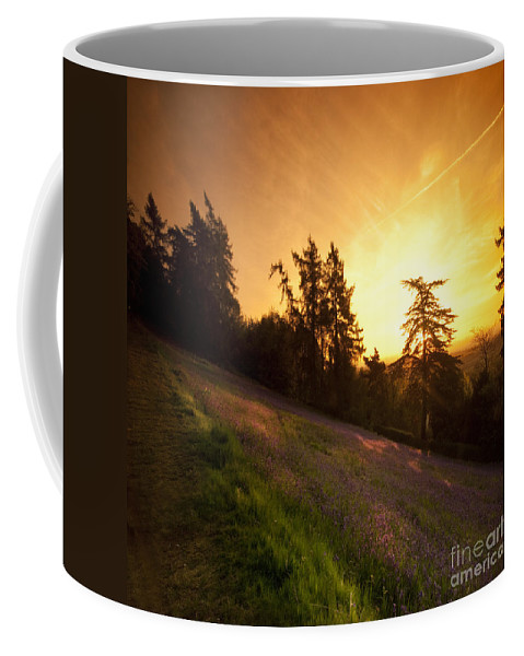 Bluebells Coffee Mug featuring the photograph Malvern Hill by Angel Ciesniarska
