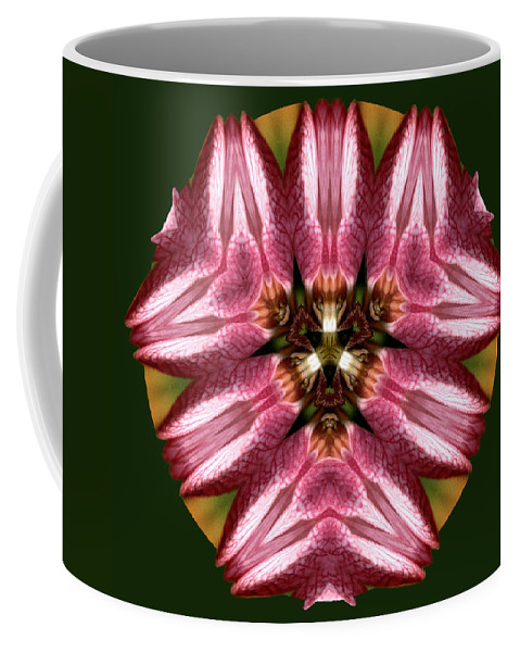Floral Coffee Mug featuring the photograph Mandala Lady Slipper by Nancy Griswold